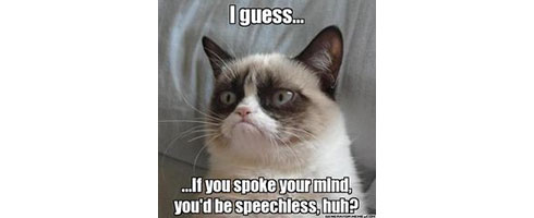 grumpy-cat-if-you-spoke-your-mind