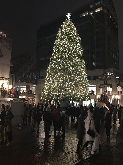 Quincy-Market-at-Thanksgiving